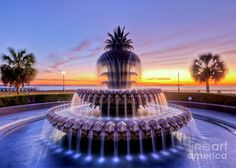 Charleston, sc | Charleston Sc Sunrise Photograph - Pineapple Fountain Charleston Sc ...