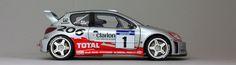 Peugeot 206 WRC - Total 2002 Tour de Corse #1 Richard Burns Tamiya #24255