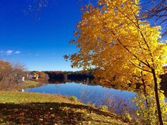The Kennebec River from behind my house: Fairfield, Me - 2015