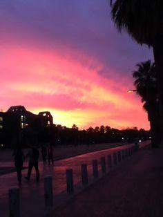 Sunset on University of Arizona campus.