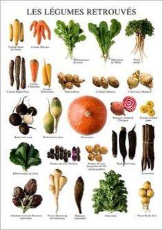 Les légumes retrouvés Atelier Nouvelles Images