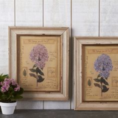 Vintage Hydrangea Wall Art from The Farthing: http://thefarthing.co.uk/products/vintage-hydrangea-wall-art