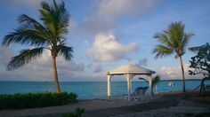 Place to relax. #relax #Bahamas #palms #heaven