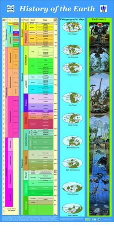 This visualization shows a timeline for the history of our planet earth. Earth Science, Science And Nature, History Of Earth, History Timeline, Science And Technology, Physics, Planet Earth, Geological Time Scale, Prehistoric Timeline