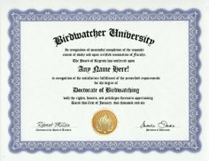 Bird Watching Birding Degree: Custom Gag Birdwatcher Diploma Birdwatching Doctorate Certificate (Funny Customized Joke Gift - Novelty Item) by GD Novelty Items. $13.99. One customized novelty certificate (8.5 x 11 inch) printed on premium certificate paper with official border. Includes embossed Gold Seal on certificate. Custom produced with your own personalized information: Any name and any date you choose.