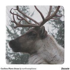 Caribou Photo Stone Trivets