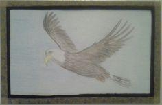 Eagle - water color pencils.