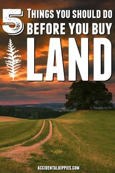 You'd be surprised how many people don't do some of these commonsense things before purchasing land. If you're looking for land to build a house, start a homestead, start a farm, or quit the rat race, you need to make sure you do these five things before Homestead Survival, Survival Skills, Homestead Land, Homestead House, Homestead Living, Survival Prepping, Emergency Preparedness, Survival Food, Camping Survival