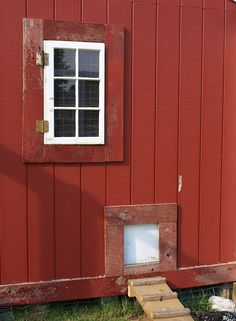 Chicken Coop Window and Door