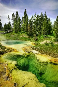 Bluebell Pool, Yellowstone National Park, Wyoming, USA