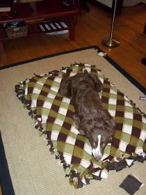 """No sew dog bed - very cute. She used two comforters from a thrift store for the """"stuffing"""", that is a GREAT idea."""