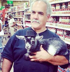 """Wal Mart Animals Everywhere... Ohhh well, since he has his fancy """"going out in public"""" hat on I suppose it's cool for you to have your goat around my grocery food. Let me go get his monocle for him.l"""