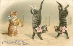 two cats walking on forelegs, ginger cat squatting playing cymbals left