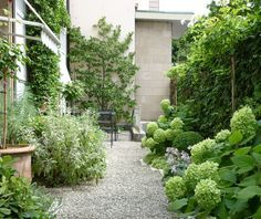 Small shade/part shade courtyard with mostly oversized plantings.