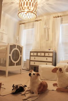 Suzie: Rock Paper Scissors - Amazing nursery design with soft gray walls paint color, The New ...