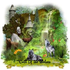 Blog - Das Forum mit Herz Graphics of Fantasy