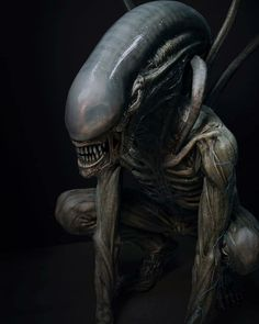 A Xenomorph from the Alien film franchise