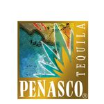 Tequila Aficionado's Alex Perez & Mike Morales taste and discuss Penasco Tequila Anejo.