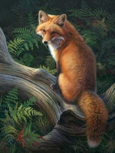 """Sun-Kissed Orange"", Red Fox, Acrylic on masonite, by Joni Johnson-Godsy"