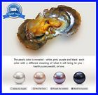 ♥§ 15 Individually #Wrapped Akoya Oysters with Large #Pearls * Size 7.5 - 8... Buy now! http://ebay.to/2tJAK7w
