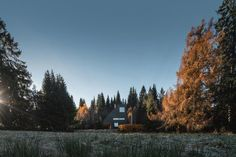 The Birdhouse Modern Home in Napa, California by Hugh Newell Jacobsen on Dwell Modern Architecture House, Amazing Architecture, Plaster House, Impressive Image, Weekend House, Menlo Park, Organic Modern, In The Tree, Architect Design