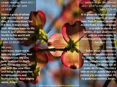 Life from death + Vida de la muerte  https://www.biblegateway.com/passage/?search=Mark+14%3A1+%E2%80%93+15%3A47%2C+John+12%3A23-50&version=ESV;NVI;MSG;NCV;NLT