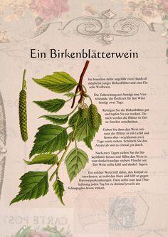Ein Birkenblätterwein