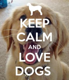 KEEP CALM AND LOVE DOGS. Another original poster design created with the Keep Calm-o-matic. Buy this design or create your own original Keep Calm design now. Keep Calm Posters, Keep Calm Quotes, Keep Calm Bilder, Cat Love Quotes, Quotes Quotes, Sport Quotes, Life Quotes, Quotable Quotes, I Love Dogs