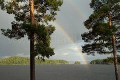 Heerlijke regenboog boven een Zweeds meer. #photography #travelphotography #canon #canonnederland #canon_photos #fotocursus #fotoreis #travelblog #reizen #reisjournalist #travelwriter#fotoworkshop #willemlaros.nl #reisfotografie #landschapsfotografie #instalaros #follow #moto73 #motor #suzuki #v-strom #MySuzuki #motorbike #motorfiets #zweden #visitsweden_ned #fb