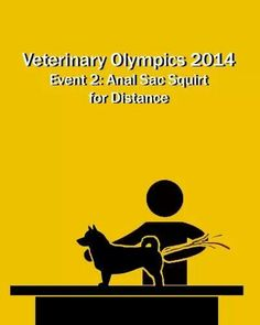 Veterinary Olympics 2014- I once got 5ft, but I know a Vet who is the expert on this!