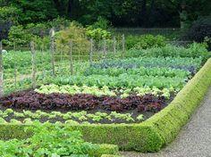 vegatable garden layout ideas | ... jump on cool season veggies | Garden & Landscape Tips from Preen.com