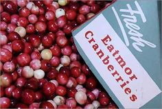 National Cranberry Festival   Oct. 20-21, Carver   Arts, crafts, entertainment, food, and bog tours highlight the annual Edaville Railroad celebration of the cranberry. Tickets are $18 ages 2-59, $16 seniors. Children under 2 are free.