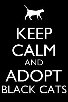 Keep calm and love this quote because my cat spooky got put down 12/18/14 and he was a black cat