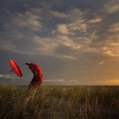 """iPhone Photography Award 2016: Platz zwei, """"She Bends with the Wind"""". (Foto…"""