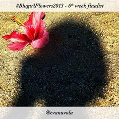 #BlugirlFlowers2013 Instagram Photo Contest finalist @evanuvola