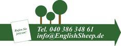English Sheep – Wir sind Ihre Rasen-Spezialisten. • Rasen-Neuanlage • Rasen-Sanierung • Künstlicher Rasen