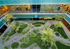 Jardín patio edificio oficinas Madrid 2007 by Urquijo-Kastner Estudio de Paisajismo.