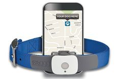 Tagg Pet Tracker Buying Tips - You can find your lost dog or cat with varieties of pet tracking devices available in the market. Out of a variety of tracking gadgets, tagg pet tracker has gained much popularity over a very short period. This GPS-enabled pet tracking gadget has helped many pet owners in the past track down...