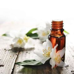 Best Essential Oils for OCD