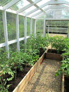 Stunning 8 Greenhouse Gardening For Beginners Ideas https://gardenmagz.com/8-greenhouse-gardening-for-beginners-ideas/ #gardeningforbeginners