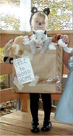 Cardboard Box Costumes Photo Gallery: Pets for Sale Costume