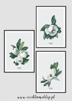 Wyjątkowy plakat botaniczny na podstawie akwareli. Sprawdź i uczyń swoje wnętrze naprawdę wyjątkowym!