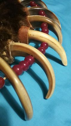 Meskwaki Bear Claw Necklace, War Bonnet, Native American Crafts, Bear Claws, Ribbon Work, First Nations, Native Americans, Perler Beads, Men's Clothing