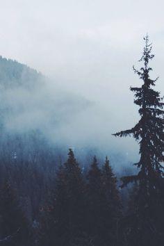 A winter story from Tatyana Kyul on STELLER #steller