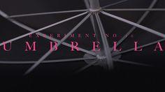 Umbrella by Tell No One. Experiment 10 - Umbrella