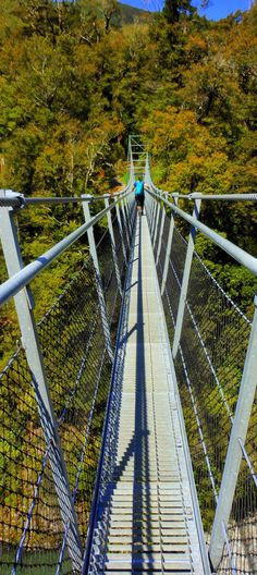 Waiohine River suspension bridge is one of New Zealand's tallest and longest suspension bridges, the bridge is 124m long over a gorge 40m deep.