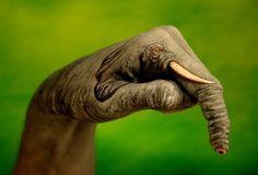 Photo Of Finger Painting Art