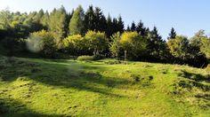 4 Scarponi blog: Monte Generoso sentiero alto