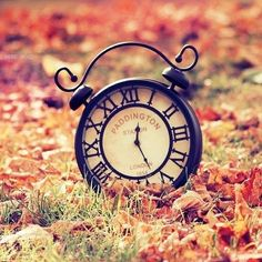 ..all things autumn ❤.. / It's Time For Autumn on we heart it / visual bookmark #36684365 on imgfave