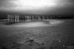 Dune fencing protecting a small section of sand. This image is also available in color! Fencing, Dune, Be Still, Fine Art America, Sidewalk, Country Roads, Wall Art, Twitter, Beach